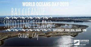 World Oceans Day 2019 Bay Cleanup