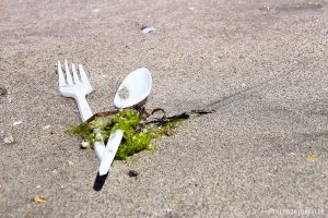 Surfrider Foundation Introduces Comprehensive Foodware Policy Toolkit